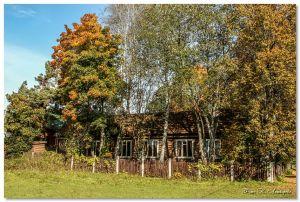 Осень в Дютькове - Строй-НЭСАБ - №23