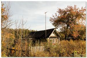 Осень в Дютькове - Строй-НЭСАБ - №15