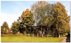Осень в Дютькове - Строй-НЭСАБ - №20